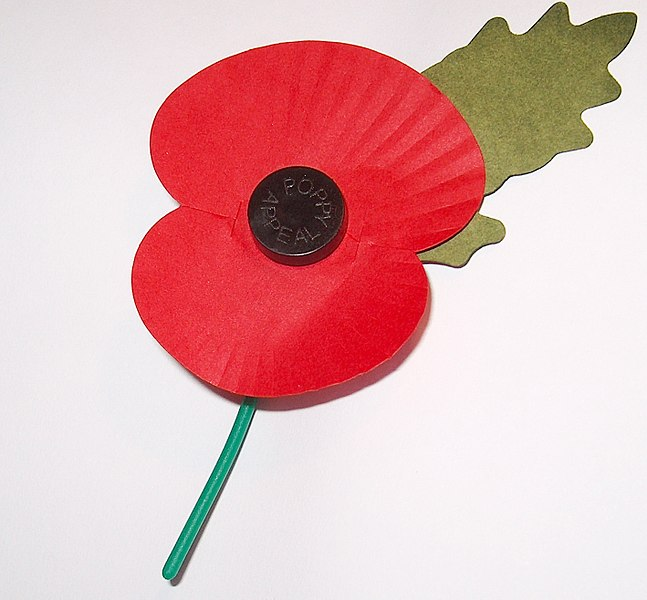 647px-Royal_British_Legion's_Paper_Poppy_-_white_background